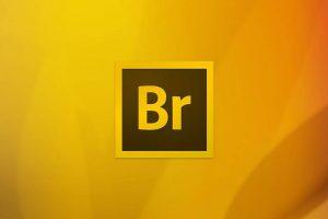 Adobe Bridge و تغییر نام دستهجمعی تصاویر توسط این ابزار