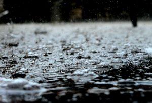 باران اسیدی چیست و چگونه محیط زیست را ویران میکند؟