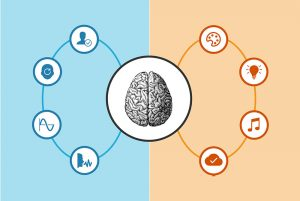 اینفوگرافیک چیست و چه فرقی با بصری سازی دادهها دارد؟