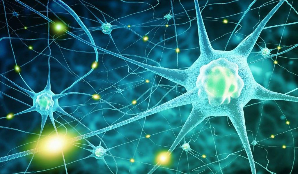 هورمون چیست؟ — بررسی ساده و جامع