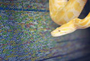 ایجاد ارتباط بین پایتون و جاوا اسکریپت با JSON