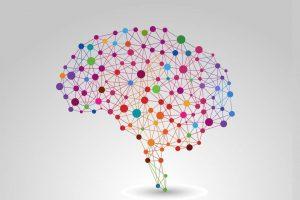 ۷ حقیقت روانشناسی شگفت انگیز در مورد مغز انسان
