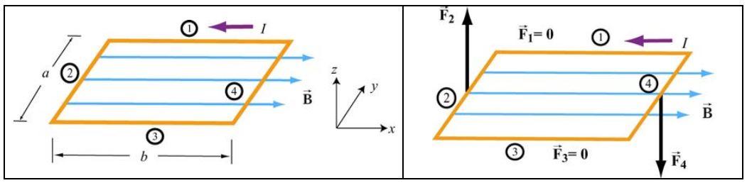 magnetic-torque