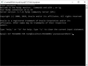 چگونه یک سرور WAMP راه اندازی کنیم؟ — از صفر تا صد
