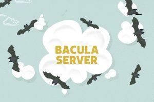 نصب سرور باکولا (Bacula) روی اوبونتو ۱۴.۰۴ — از صفر تا صد