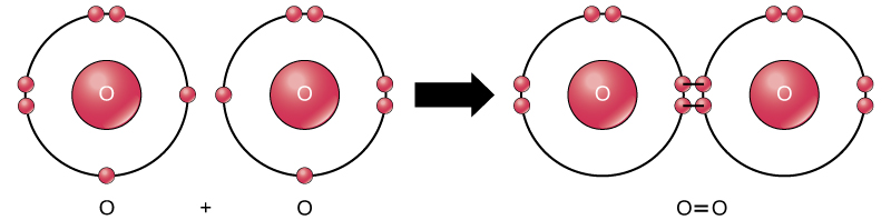 oxygen-shared-electron