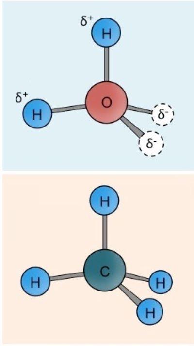 polar-nonplolar-molecule