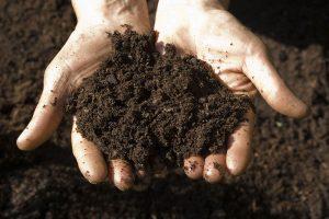 یادگیری عمیق (Deep Learning) در علوم خاک — راهنمای کاربردی (بخش اول)