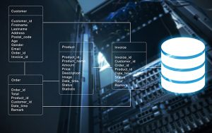 اطلاعات پایگاه داده در MySQL — راهنمای جامع