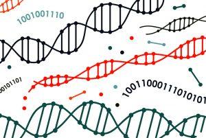 مقدمهای بر الگوریتم ژنتیک به همراه کد جاوا — به زبان ساده