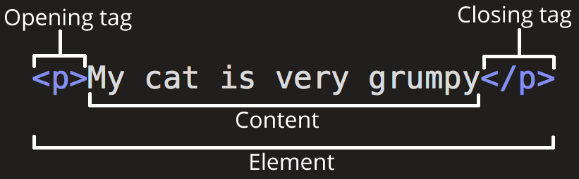 Anatomy of an HTML element Section