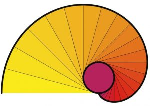 منحنی اینولوت — از صفر تا صد