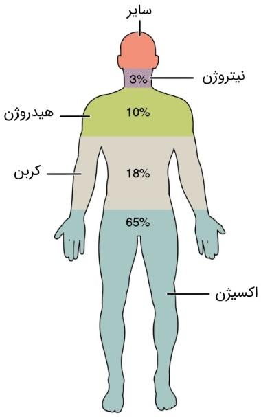 سیستم های بیولوژیکی