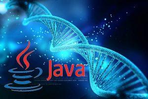 طراحی الگوریتم ژنتیک در جاوا — به زبان ساده