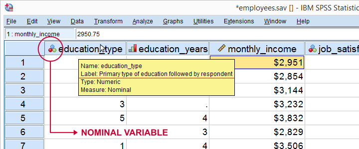 spss-dictionary-information-in-data-view