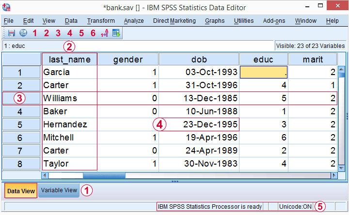 spss-variables-cases-values-in-data-view