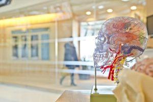 ساخت شبکه عصبی — راهنمای مقدماتی