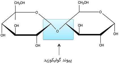 پیوند-گولیکوزید