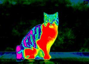 مادون قرمز (Infrared) یا فروسرخ — به زبان ساده