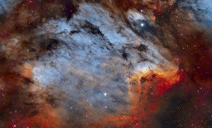 سحابی پلیکان — تصویر نجومی روز