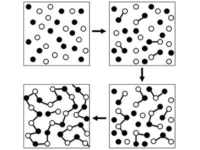 پلیمریزاسیون رشد پلهای