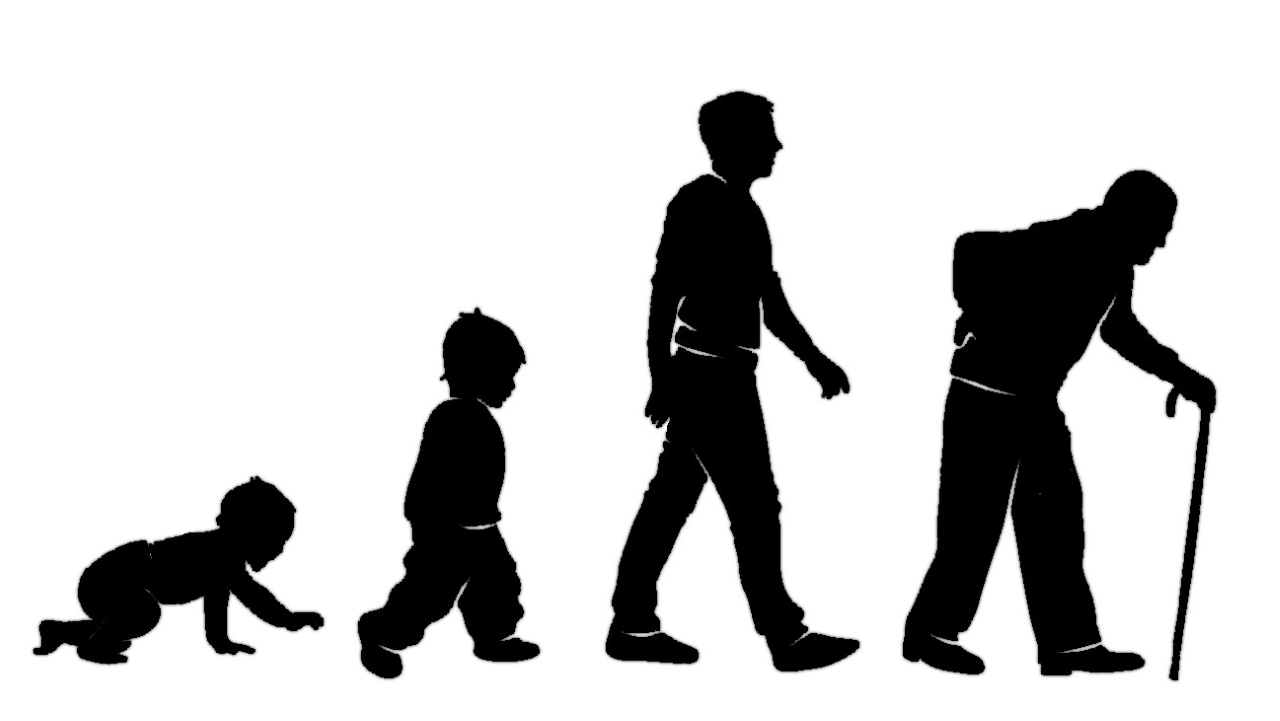 چرا پیر می شویم و نقش تلومر در آن چیست؟
