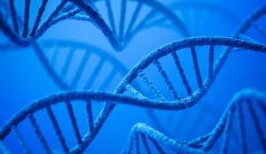 مولکول DNA چیست؟ — از صفر تا صد