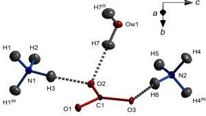 پیوند هیدروژنی – به زبان ساده