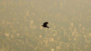 آلودگی هوا چیست ؟ — عوامل، انواع، تاثیر بر سلامت | به زبان ساده