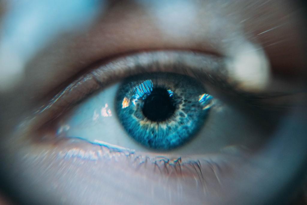 تکامل چشم، بینایی و دید رنگی در جانوران مختلف — بخش دوم
