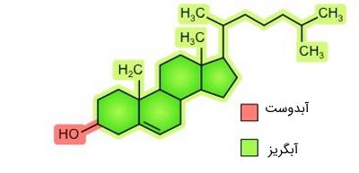 ساختار شیمیایی کلسترول