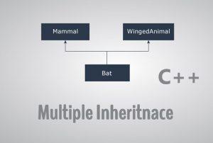 وراثت چندگانه، چند سطحی و سلسله مراتبی در ++C — راهنمای کاربردی