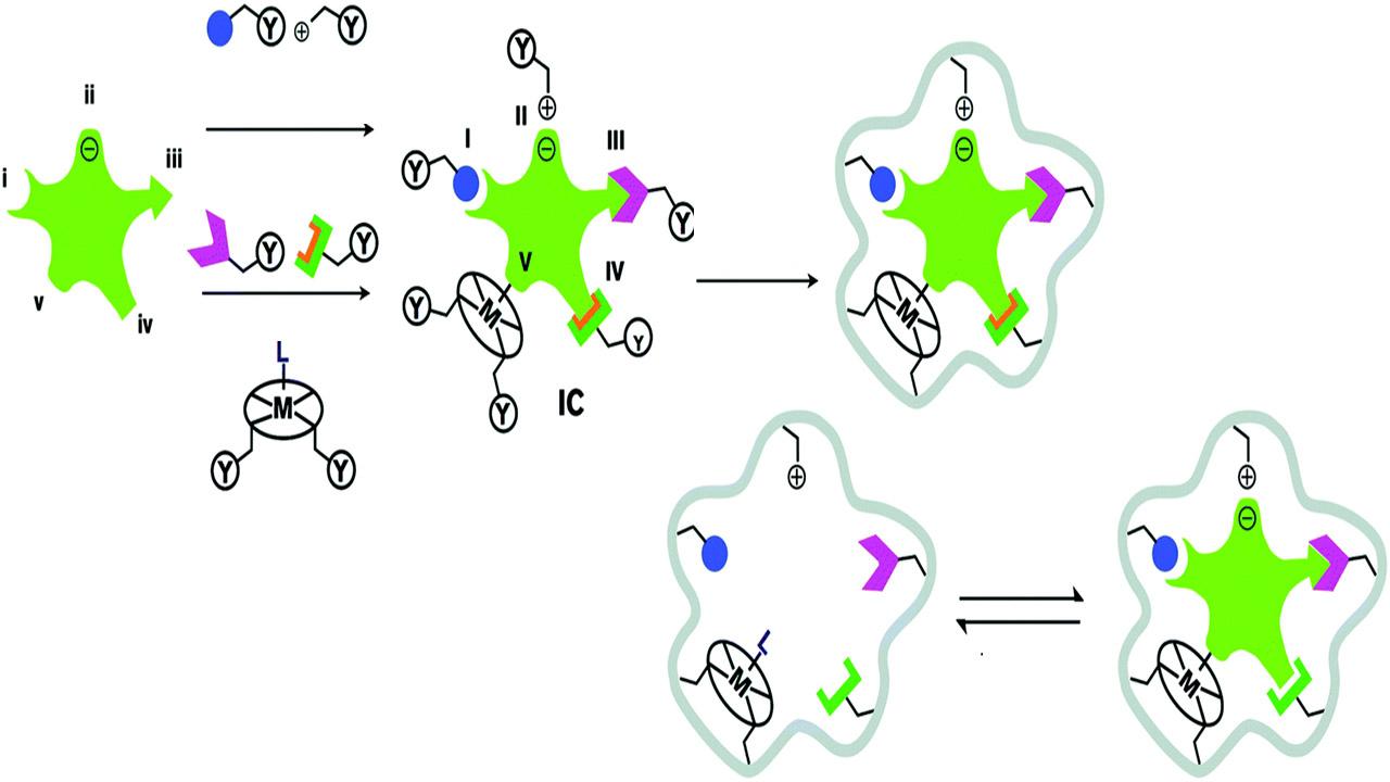 قالب زنی مولکولی — به زبان ساده