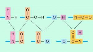 گروه عاملی در شیمی — به زبان ساده