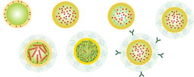 انواع لیپوزوم های تحویل دارو
