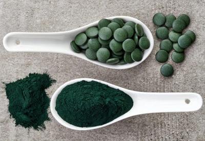 ساخت دارو از جلبک