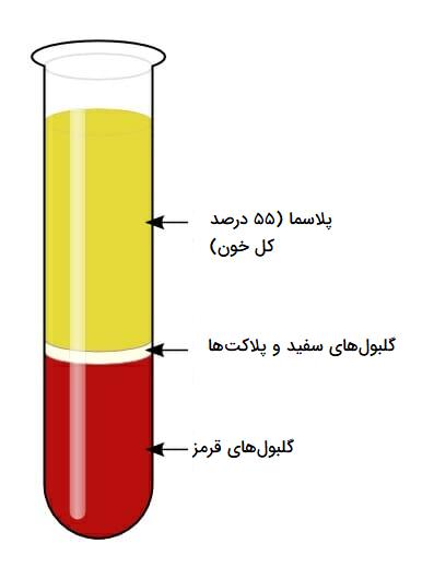 اجزای خون