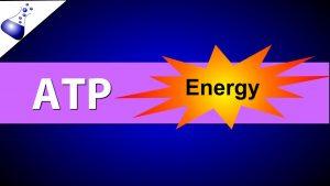 ATP چیست؟ — به زبان ساده