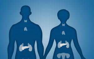 سیستم غدد بدن — به زبان ساده