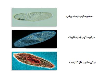 مقایسه تصاویر میکروسکوپ زمینه روشن، زمینه تاریک و فازکنتراست