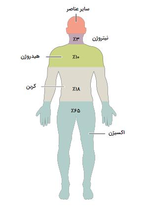 عناصر شیمیایی بدن