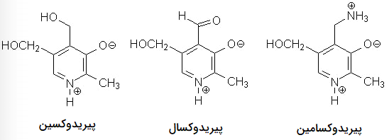 ویتامین ب ۶