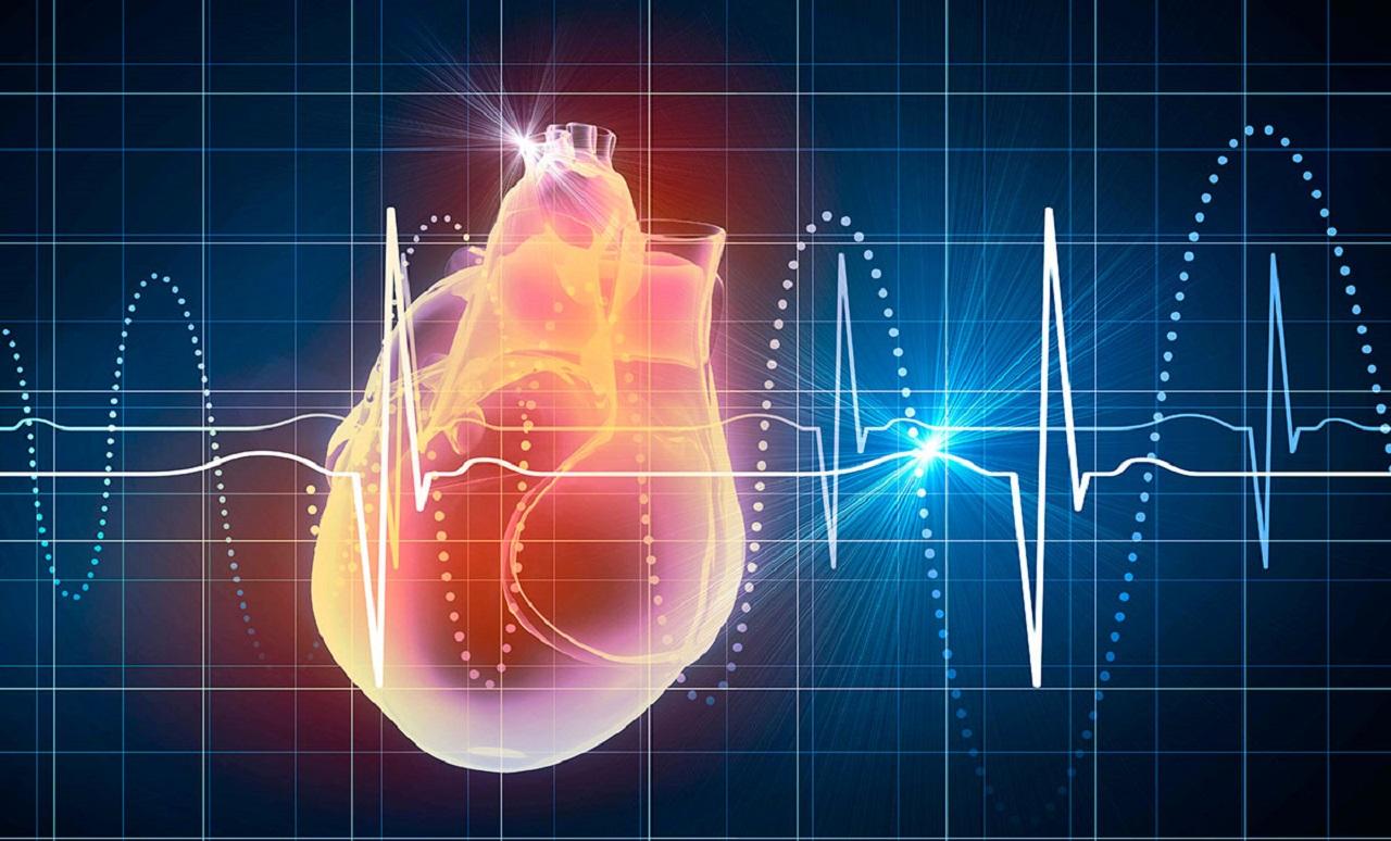 تفسیر نوار قلب — آموزش خواندن نوار قلب | به زبان ساده