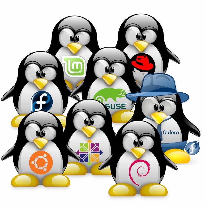 لینوکس چیست