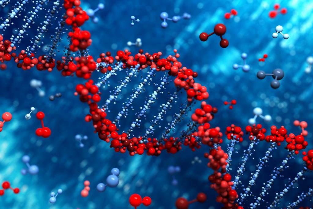 PCR چیست؟ | هر آنچه باید بدانید
