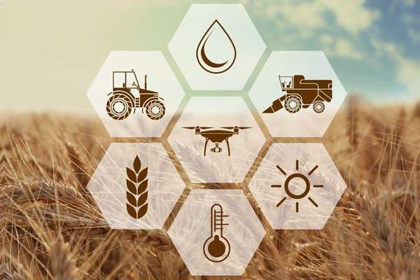 تحصیل کشاورزی در ایران