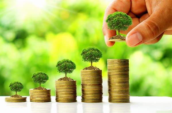 بازار کار مهندسی تولید و ژنتیک گیاه