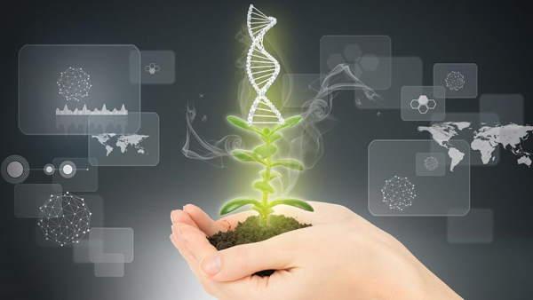 گرایش های مهندسی تولید گیاه