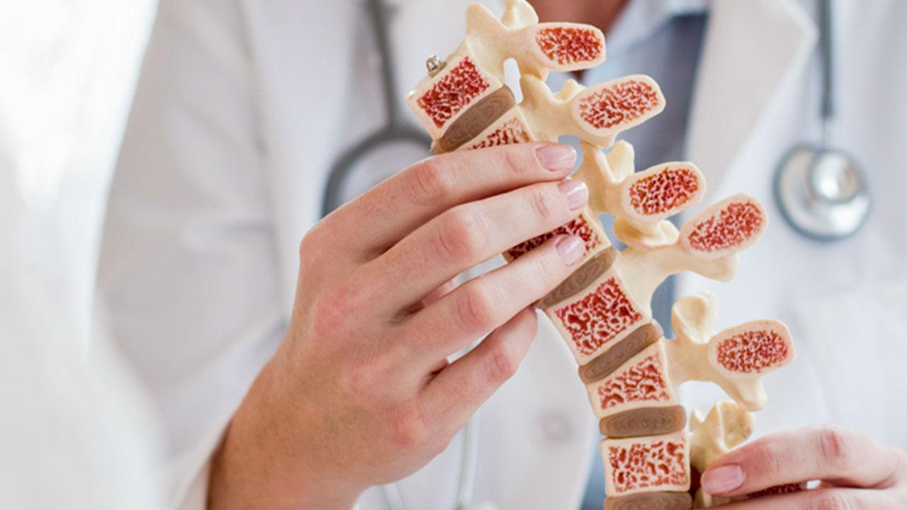 مغز استخوان چیست؟ | ساختار، عملکرد و بیماری ها — به زبان ساده