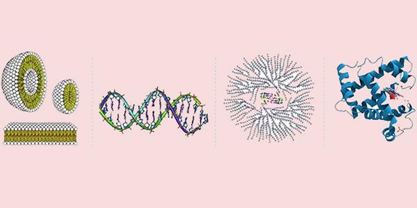 انواع مولکولهای زیستی
